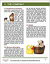 0000084811 Word Templates - Page 3