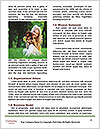 0000084811 Word Templates - Page 4