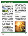 0000084835 Word Template - Page 3