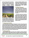0000084835 Word Template - Page 4