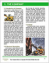 0000084838 Word Templates - Page 3