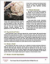 0000084840 Word Templates - Page 4