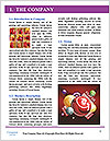 0000084853 Word Template - Page 3