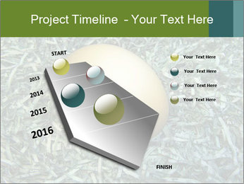 0000084856 PowerPoint Template - Slide 26