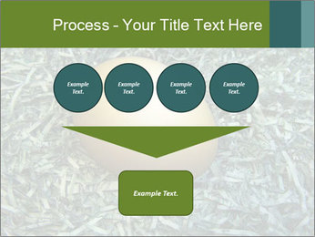 0000084856 PowerPoint Template - Slide 93