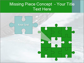 0000084867 PowerPoint Template - Slide 45