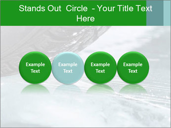 0000084867 PowerPoint Template - Slide 76