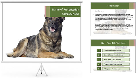 0000084871 PowerPoint Template