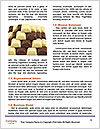 0000084873 Word Template - Page 4