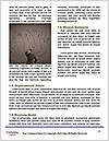 0000084875 Word Template - Page 4