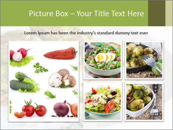 0000084876 PowerPoint Template - Slide 19