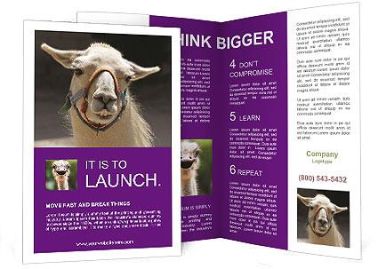 0000084887 Brochure Templates