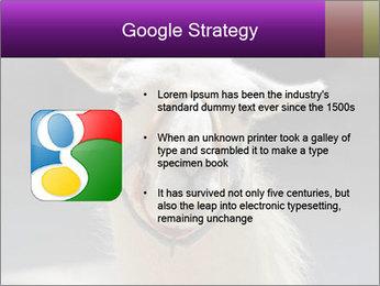 0000084887 PowerPoint Template - Slide 10