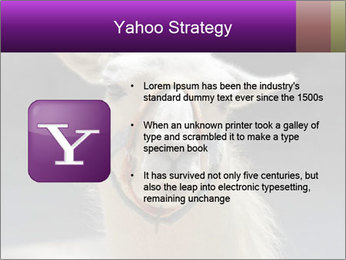 0000084887 PowerPoint Template - Slide 11