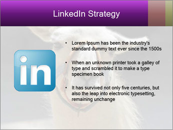 0000084887 PowerPoint Template - Slide 12