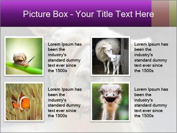 0000084887 PowerPoint Template - Slide 14