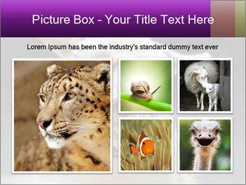 0000084887 PowerPoint Template - Slide 19