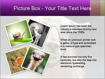 0000084887 PowerPoint Template - Slide 23