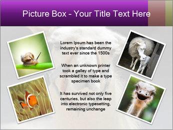 0000084887 PowerPoint Template - Slide 24