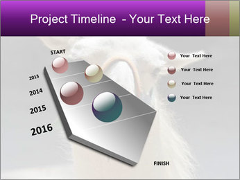 0000084887 PowerPoint Template - Slide 26