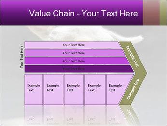 0000084887 PowerPoint Template - Slide 27