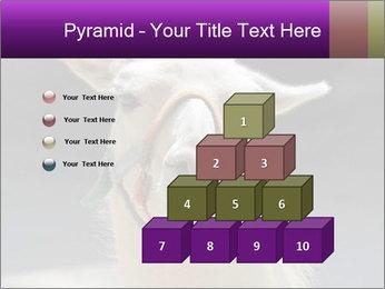 0000084887 PowerPoint Template - Slide 31