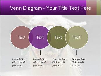 0000084887 PowerPoint Template - Slide 32