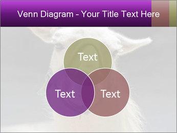 0000084887 PowerPoint Template - Slide 33