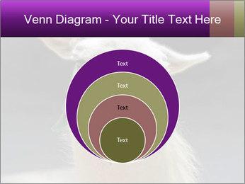 0000084887 PowerPoint Template - Slide 34