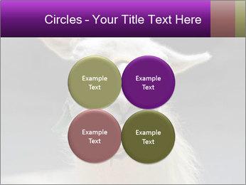 0000084887 PowerPoint Template - Slide 38