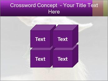 0000084887 PowerPoint Template - Slide 39