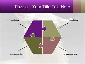 0000084887 PowerPoint Template - Slide 40