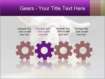 0000084887 PowerPoint Template - Slide 48