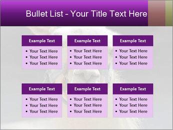 0000084887 PowerPoint Template - Slide 56