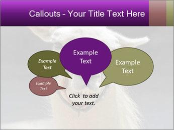 0000084887 PowerPoint Template - Slide 73