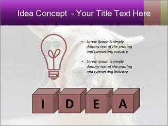 0000084887 PowerPoint Template - Slide 80