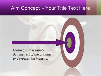 0000084887 PowerPoint Template - Slide 83