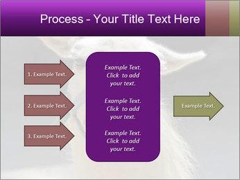 0000084887 PowerPoint Template - Slide 85