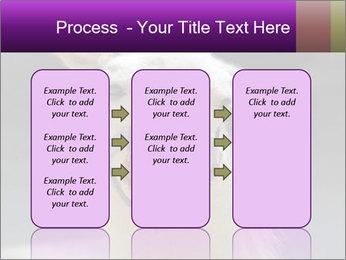 0000084887 PowerPoint Template - Slide 86