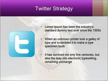0000084887 PowerPoint Template - Slide 9