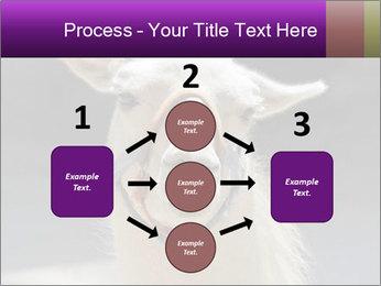 0000084887 PowerPoint Template - Slide 92