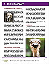 0000084887 Word Templates - Page 3