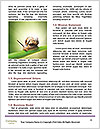 0000084887 Word Templates - Page 4