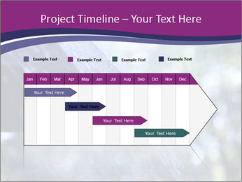 0000084893 PowerPoint Template - Slide 25