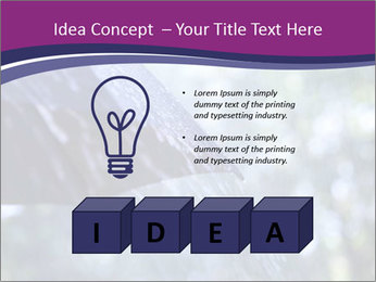 0000084893 PowerPoint Template - Slide 80