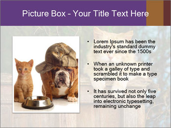 0000084900 PowerPoint Template - Slide 13