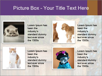 0000084900 PowerPoint Template - Slide 14
