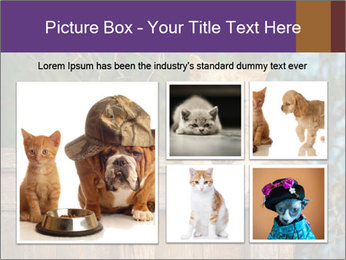 0000084900 PowerPoint Template - Slide 19
