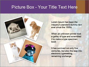 0000084900 PowerPoint Template - Slide 23