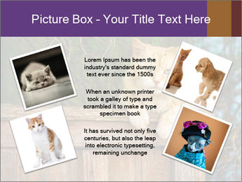 0000084900 PowerPoint Template - Slide 24